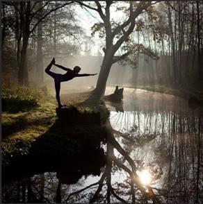 yoga creek