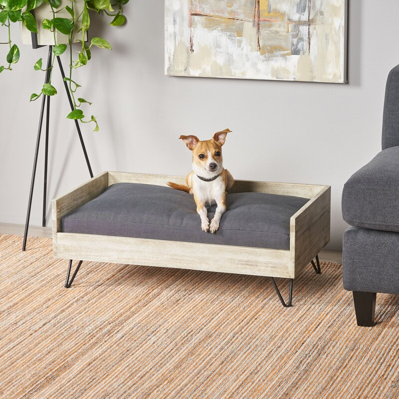 Kaylor+Mid+Century+Modern+Dog+Sofa